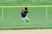 Shea Kenneally Baseball Recruiting Profile