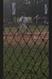 Stephen Rish Baseball Recruiting Profile