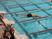 Michael Gurney Men's Swimming Recruiting Profile