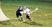 Athlete 403837 square