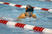 Serena Ly Women's Swimming Recruiting Profile