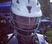 Brogan Adams Men's Lacrosse Recruiting Profile