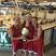 Bria Lemirande Women's Basketball Recruiting Profile