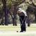 Hilary Whalen Women's Golf Recruiting Profile