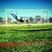 Levi Lord Men's Soccer Recruiting Profile