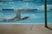 Tori Scheider Women's Swimming Recruiting Profile