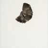 Liz Jaff, Medium Fold 9, 2010