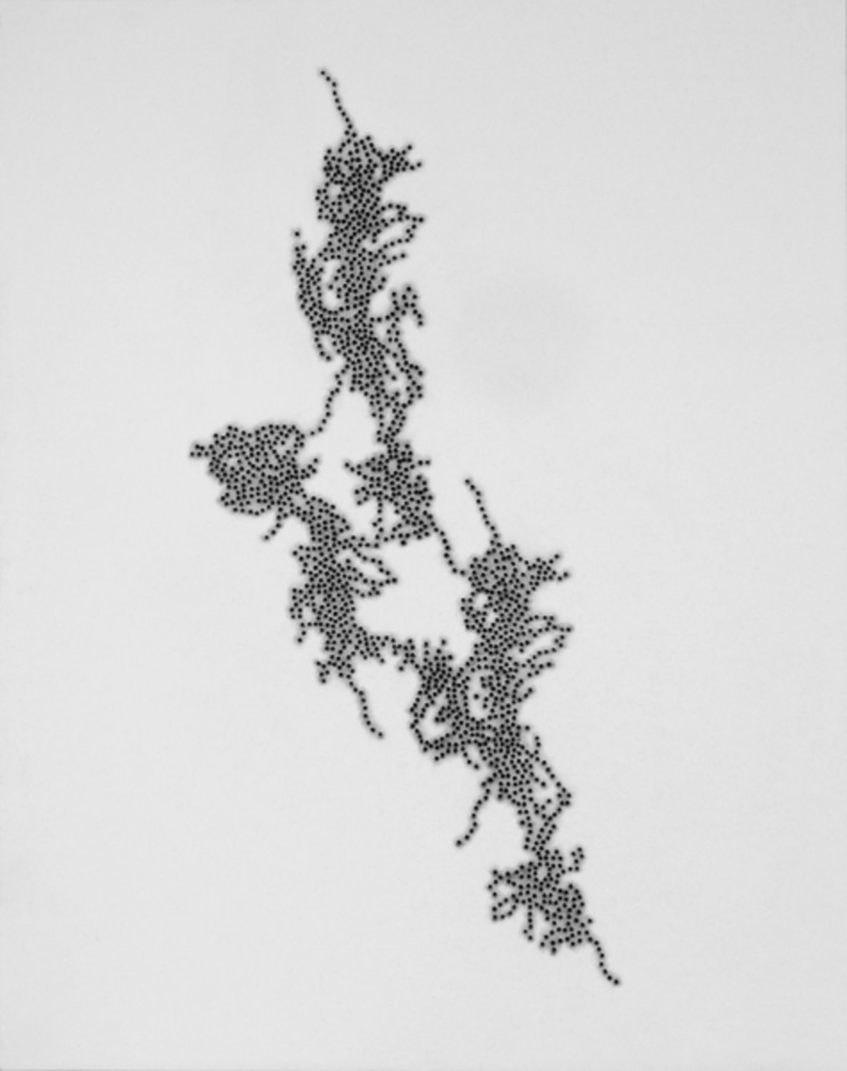Taney Roniger, Inscape Series (Freeform #1, Graphite), 2015