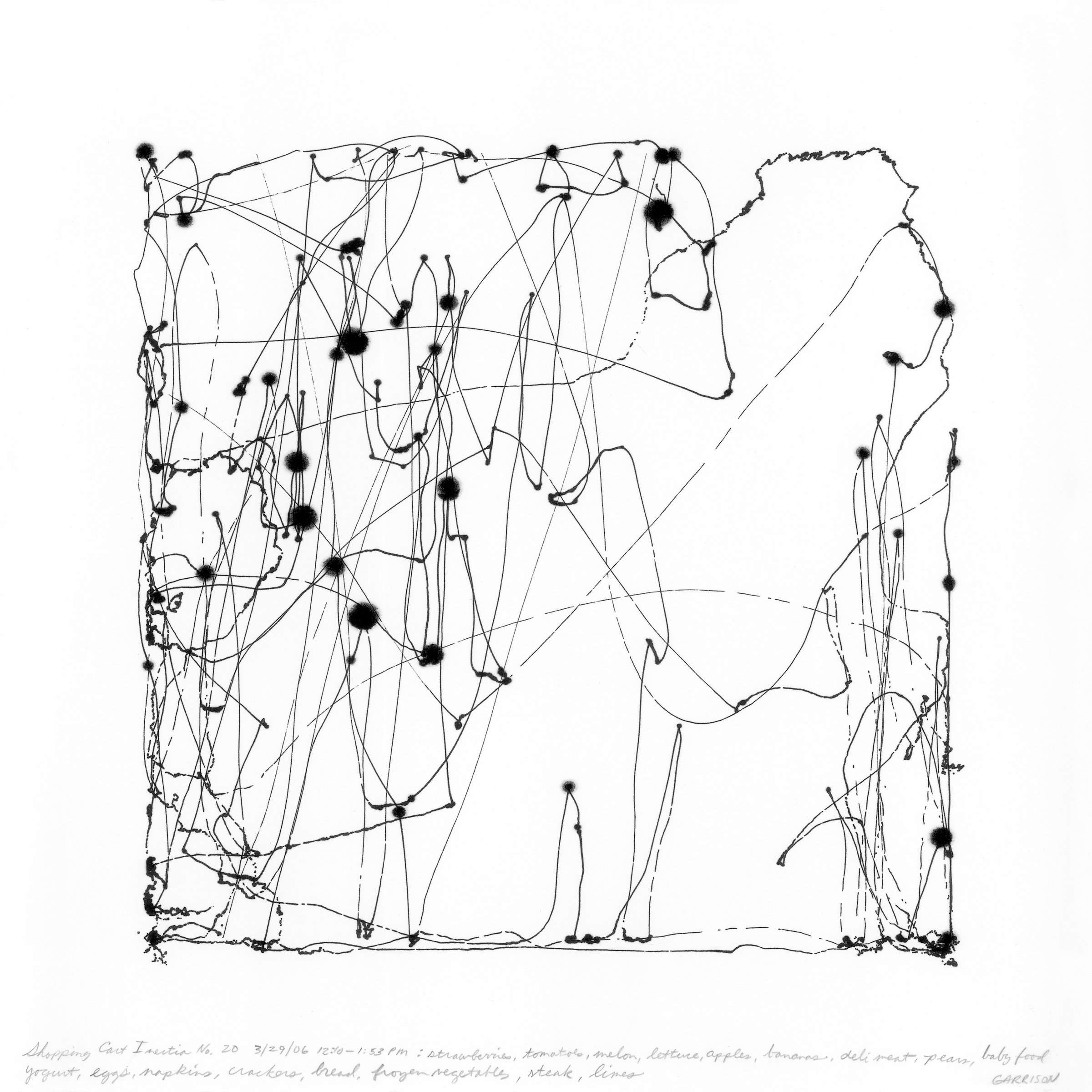 Richard Garrison, Shopping Cart Inertia No. 20, 2006
