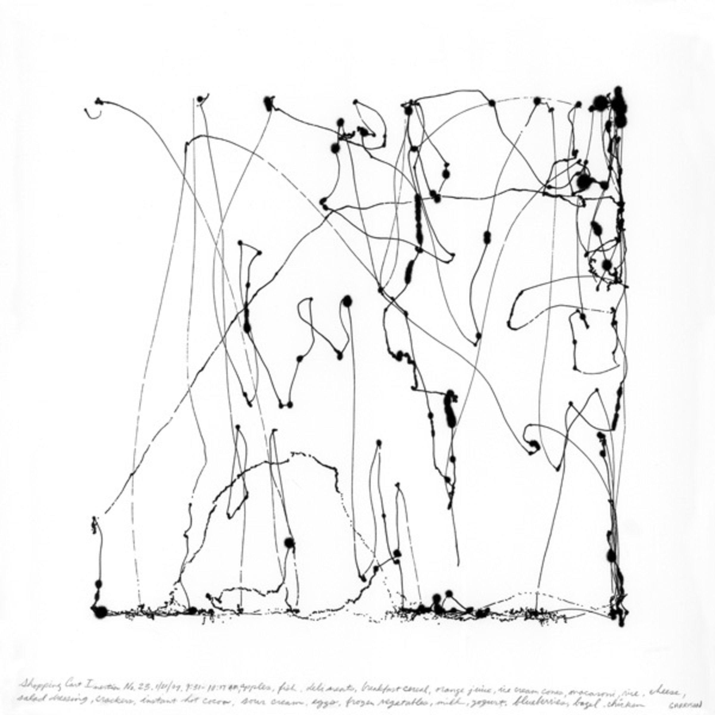 Richard Garrison, Shopping Cart Inertia No. 23, 2007