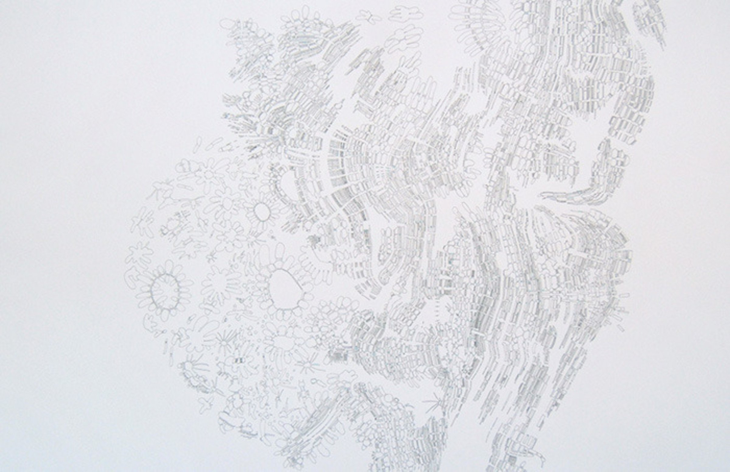 Colin Keefe, Mycelia, 2010