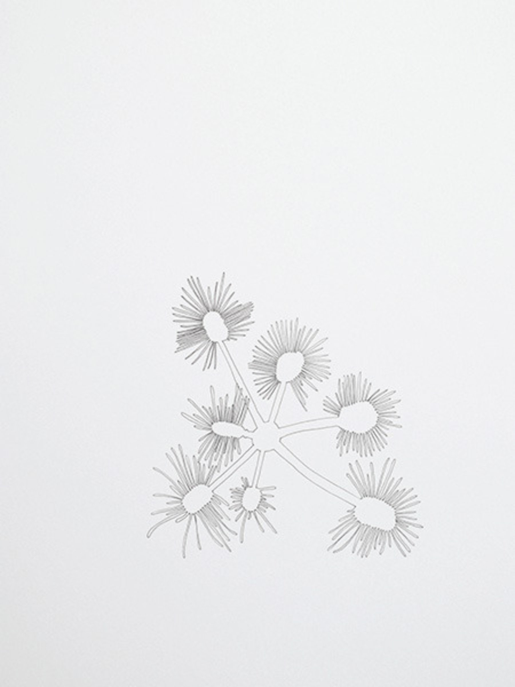 Colin Keefe, untitled (10004), 2012