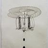 James Cullinane, Snare Drawing 1, 2012