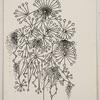 James Cullinane, Notebook Drawing 4, 2013