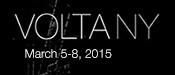 Volta-ny-logo-2015