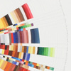 Richard Garrison, Circular Color Scheme: Office Max, 1/10 - 1/16, 2010, Pgs. 6 – 7, 2010