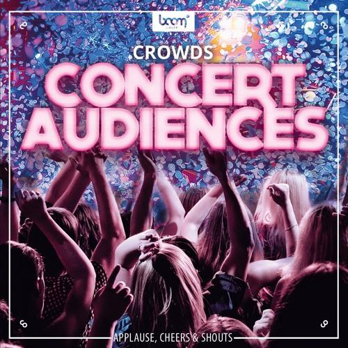 Crowd - Concert Audiences