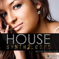 House Synth Loops 2