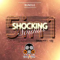 Shocking Sounds 5-in-1 (Vols 11-15)