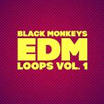 EDM Loops Vol.1