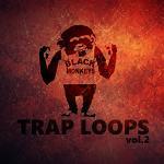 Trap loops vol.2