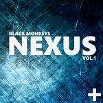 BM Nexus Vol1