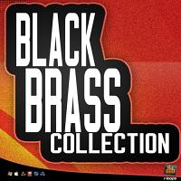 Black Brass Collection