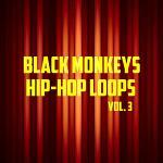Hip-hop loops vol.3