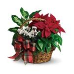 6047 - Holiday Homecoming Basket Santa Maria CA delivery.