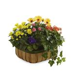4019 - Gentle Blossoms Basket Santa Maria CA delivery.