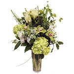 2064 - Oliver Vase Arrangement Santa Barbara, CA delivery.