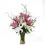 2186 - Shoshana Vase Arrangement US and Canada delivery.