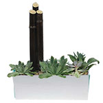 2215 - Jade Garden in White Santa Maria CA delivery.