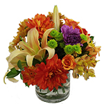 Image of One of our most popular arrangement styles is Autumn ready. A lush collection of bright Fall blooms, closely arranged in a quality glass cylinder.