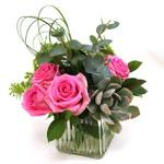 Image of Vibrant pink roses, Queen Anne's Lace and a rosy succulent sweetly arranged in a ribbed glass cube.