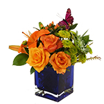 Image of Orange hues, purple, and lime green arranged in a deep blue, glass cube. Perfect for late Summer and Autumn.
