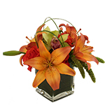 Image of Hazan is a luxuriously full arrangement of fiery orange and gold lilies, green cymbidiums, millet and peach hypericum.