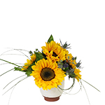 Image of Soraya Sunflower Bouquet is a vibrant, happy arrangement of fresh Sunflowers, Sea Holly and grasses in our Olympia cashe pot from Portugal.