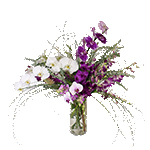 2619 - Leilani Orchid Arrangement US and Canada delivery.