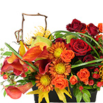 2675 - Clover Autumn Bouquet Santa Maria CA delivery.