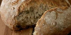 Artisanal_bread_v2_crop