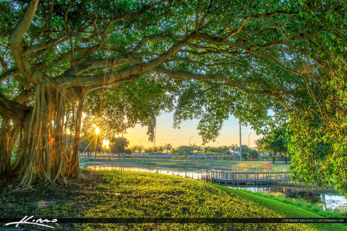 Dreher Park West Palm Beach Fl