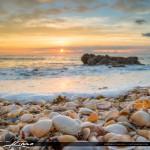 Beautiful Sunrise at Beach with Seashells