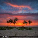 Explosive Sunrise Colors Over Cocnut Trees at Beach Square