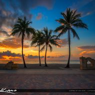 Amazing sunrise and colors from Hollywood Beach on New Mexico Street with some coconut trees. HDR image created in EasyHDR software.