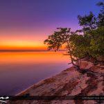 Fort Pierce Indian River Hutchinson Island Golden Purple Glow