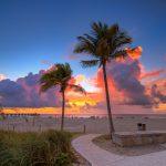 Coconut Tree Sunrise Pompano Beach Pier