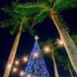 Delray Beach 40 foot Christmas Tree 2016