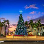 Christmas Tree 2016 Fort Pierce Florida Sunset