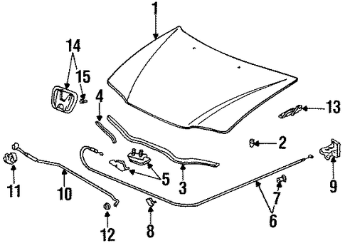 Toyota Hood Parts Diagram on 95 accord fuel pump location